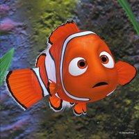 Ravensburger puzzle 3 en 1 Nemo : Dans l'aquarium-Avant