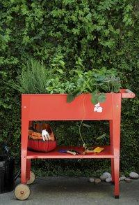 Kweektafel Trolley 75 x 35 cm rood-Afbeelding 1