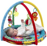 Playgro speeltapijt/ballenbad Ball Activity Nest -Afbeelding 1
