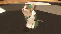 Nintendo Switch Little Friends: Dogs & Cats ENG/FR-Afbeelding 3