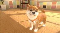 Nintendo Switch Little Friends: Dogs & Cats ENG/FR-Afbeelding 1