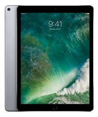 Apple iPad Pro Wi-Fi 12.9/ 64 GB space grey-Artikeldetail