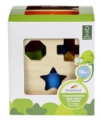 DreamLand trieur de formes Cube en bois-Avant