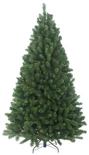 Sapin de Noël Boulder Spruce 210 cm