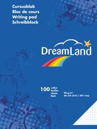 DreamLand cursusblok A4 geruit