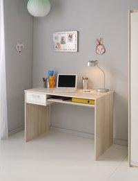 Bureau Maxime-Image 1