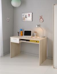 Bureau Maxime-Afbeelding 1