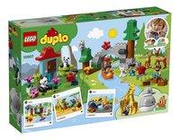 LEGO DUPLO 10907 Les animaux du monde-Arrière