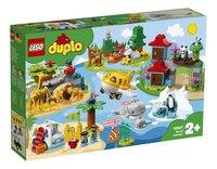 LEGO DUPLO 10907 Les animaux du monde-Côté gauche