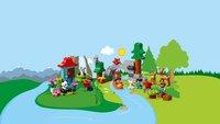 LEGO DUPLO 10907 Les animaux du monde-Image 2