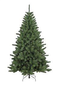 Sapin de Noël Colorado 240 cm