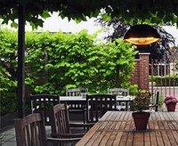 Sunred Elektrische hangende terrasverwarmer Mushroom 1500 W antraciet-Afbeelding 4