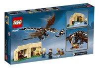 LEGO Harry Potter 75946 Hongaarse Hoornstaart Toverschool Toernooi-Achteraanzicht