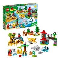 LEGO DUPLO 10907 Les animaux du monde-Détail de l'article
