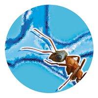 Buki France Mini-mierenwereld-Artikeldetail