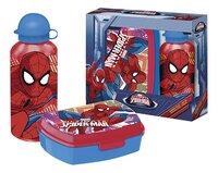 Brooddoos en drinkfles Spider-Man