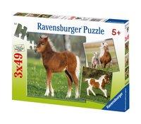 Ravensburger puzzel 3-in-1 Ponyvriendschap