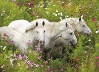 Ravensburger XXL puzzel Paarden tussen de Bloemen-Vooraanzicht