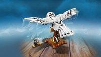 LEGO Harry Potter 75979 Hedwig-Afbeelding 1