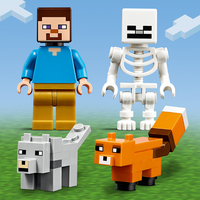 LEGO Minecraft 21162 Aventures dans la taïga-Image 1