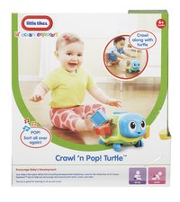 Little Tikes Lil' Ocean Explorers Crawl 'n Pop! Turtle-Achteraanzicht