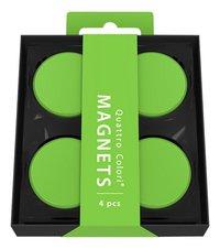 Quattro Colori magneet Verde Vivo - 4 stuks