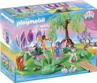 Playmobil Fairies 5444 Feeëneiland met magische juwelenbron