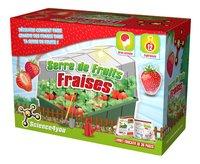 Science4you Serre de Fruits Fraises-Côté droit
