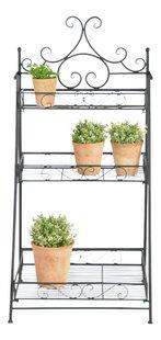 Esschert plantenrek/bloementrap zwart-commercieel beeld