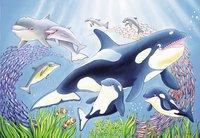 Ravensburger puzzel 2-in-1 Kleurrijke onderwaterwereld-Artikeldetail