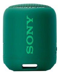 Sony bluetooth luidspreker SRS-XB12 groen-Vooraanzicht