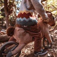 Vélo sans pédales My Buddy Wheels Cheval-Image 2