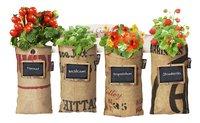 Baza Seeds & Mini Garden hangtuintje-Vooraanzicht
