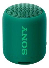 Sony bluetooth luidspreker SRS-XB12 groen-Bovenaanzicht