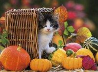 Ravensburger XXL puzzel Katje in de herfst-Vooraanzicht