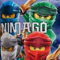 Pyjama LEGO Ninjago Fleece-Artikeldetail
