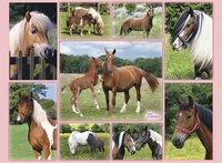 Ravensburger XXL puzzel Horse Heaven-Vooraanzicht