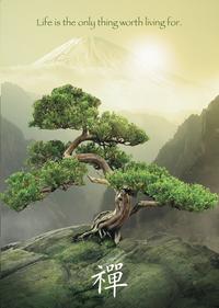 Ravensburger puzzle Attitude Zen-Avant