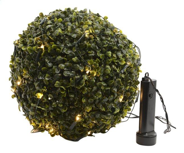 Afbeelding van Ledverlichting net voor buxus warm wit from DreamLand