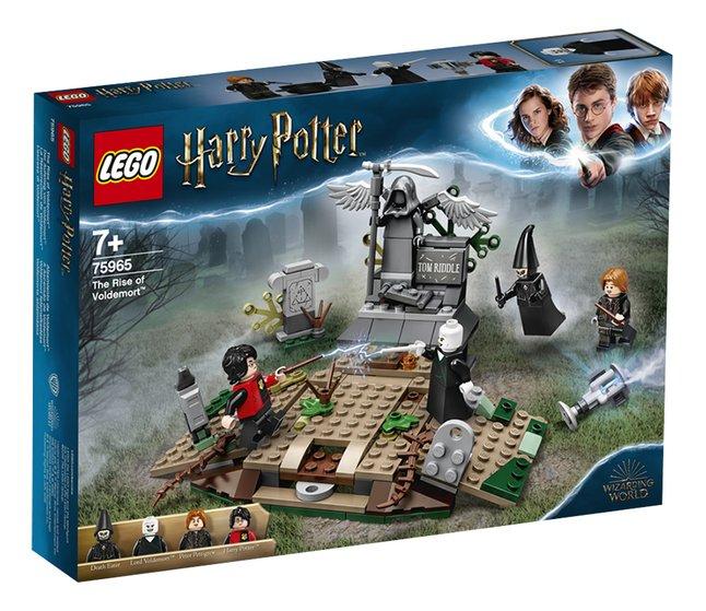 Afbeelding van LEGO Harry Potter 75965 De opkomst van Voldemort from DreamLand