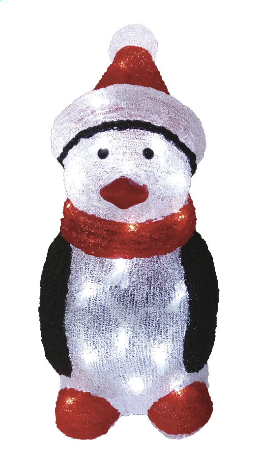 Afbeelding van Dier met ledverlichting Pinguïn from DreamLand