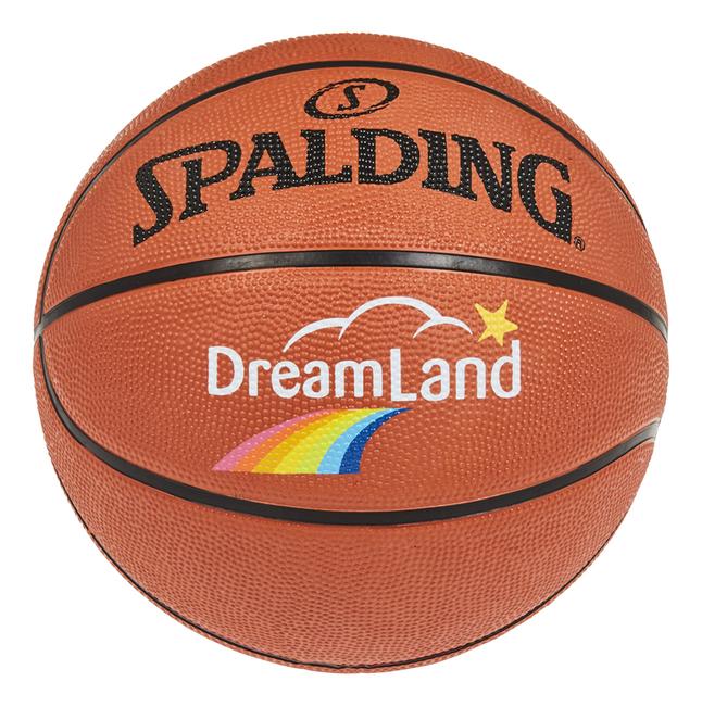 Spalding ballon de basket DreamLand taille 5