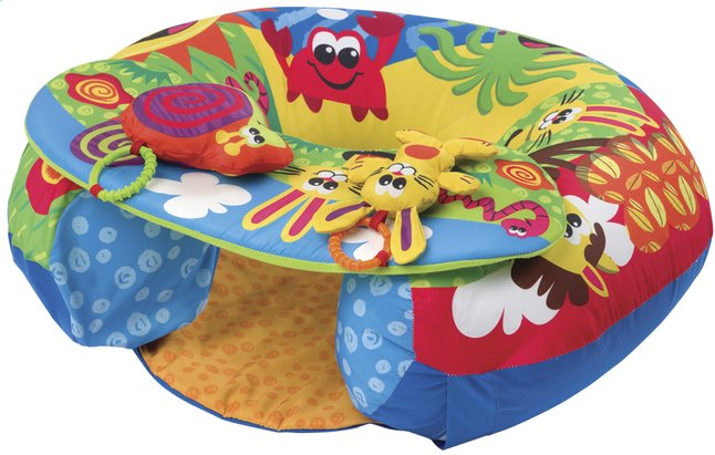 Afbeelding van Playgro zit- en speelkussen Sit and Play from DreamLand