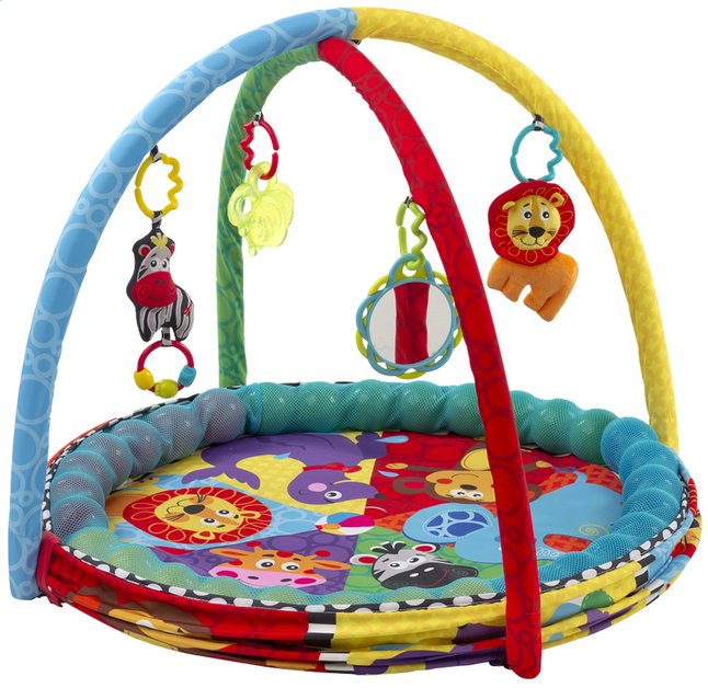 Afbeelding van Playgro speeltapijt/ballenbad Ball Activity Nest from DreamLand