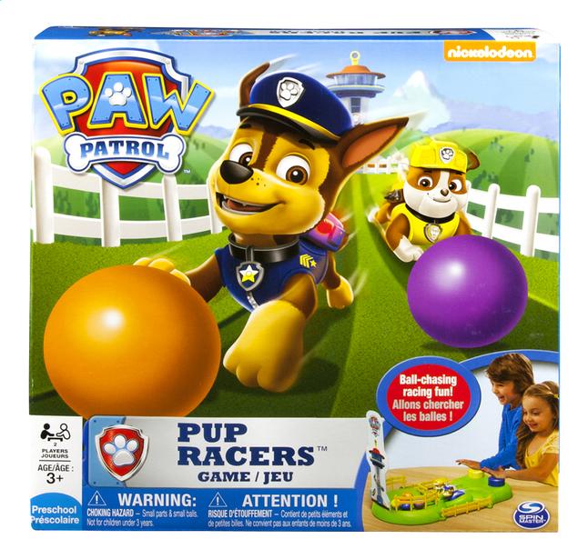 Afbeelding van PAW Patrol Pup Racers from DreamLand