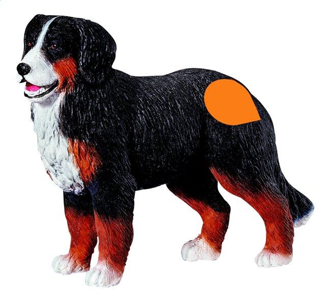 Afbeelding van Ravensburger Tiptoi interactieve figuur Berner Sennen hond from DreamLand