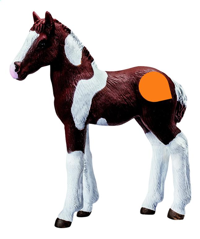 Image pour Tiptoi figurine interactive Barock Pinto le poulain à partir de DreamLand