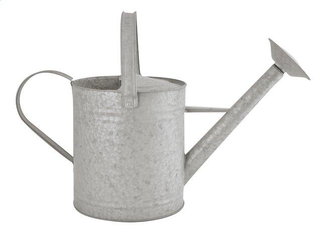 Esschert Design Gieter 8,7 l zink
