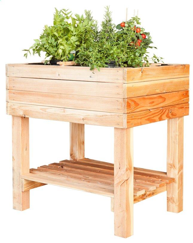 Image pour Table à potager Pinus 80 x 60 cm à partir de DreamLand