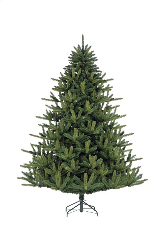 Afbeelding van Kerstboom Evergreen Supreme 240 cm from DreamLand